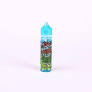 Liquid für E-Zigarette von Twelve Monkeys